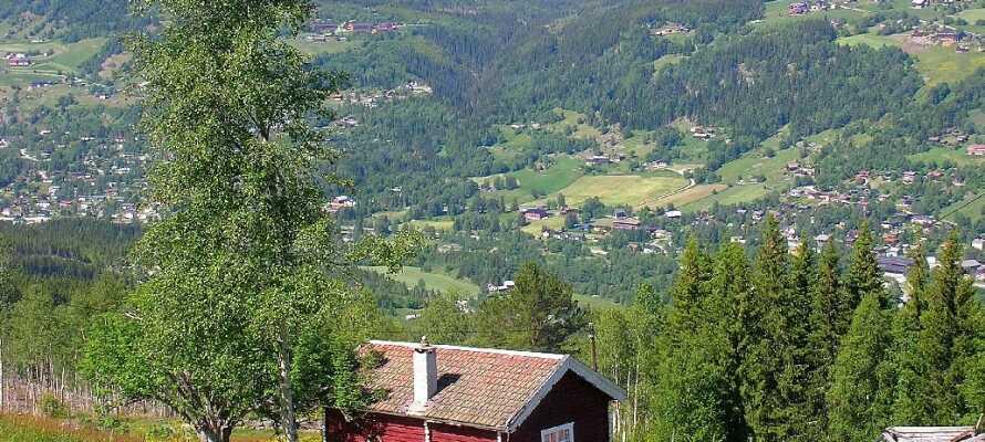 Ål ved Hallingdal grænser op til Gol mod øst, Hemsedal mod nordøst, mens Lærdal ved Sognefjorden ligger mod nord vest