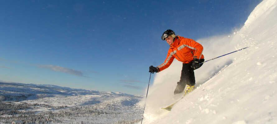 Nyt vinterferien og dra til Thon Hotel Hallingdal hvor dere kan utforske skibakkene i Ål, nyte solen og den vakre naturen.