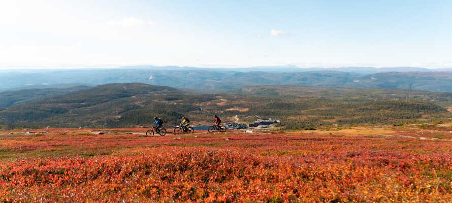 Det naturskønne område er perfekt til såvel vandre-og cykelture som sejlture på søen.