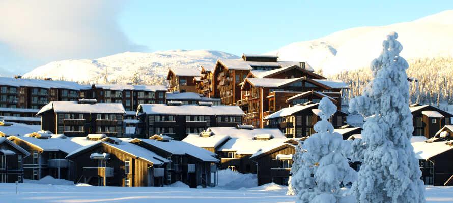 Norefjell Ski & Spa ligger midt i det vakre norske vinterlandskapet og er perfekt for en skiferie.