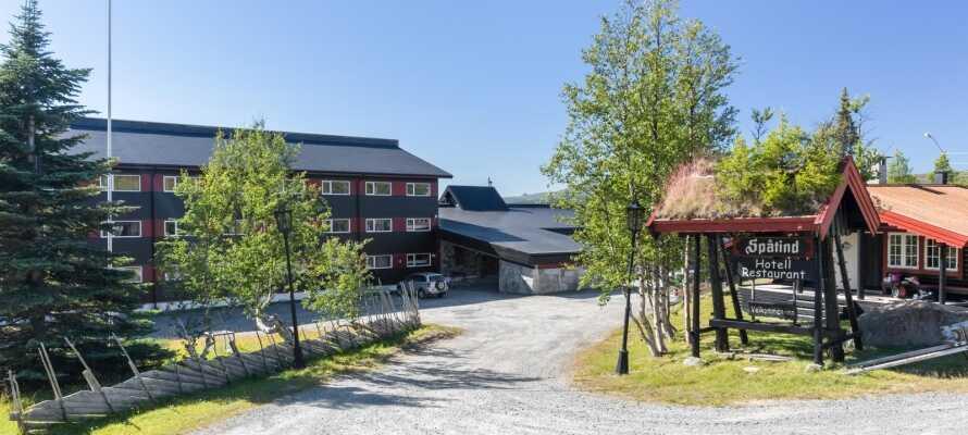 Spåtind Fjellstue har en skøn beliggenhed på Synnfjellet, og tilbyder en familievenlig base for aktiv ferie hele året rundt.