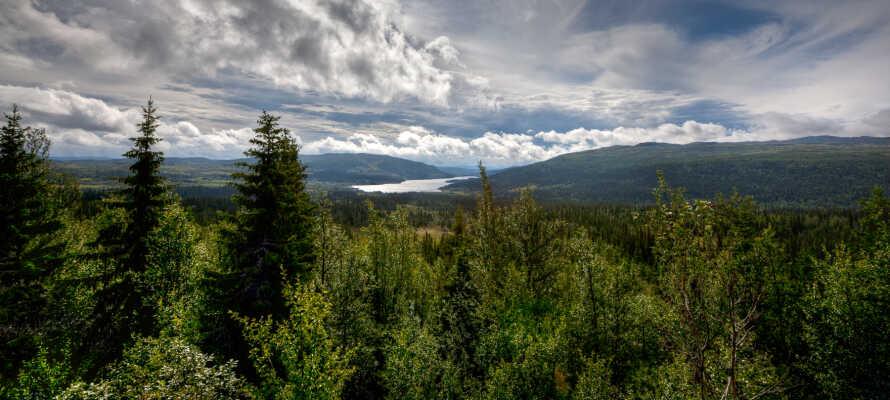 I bor omgivet af fantastisk natur, som er helt perfekt til herlige vandreture.