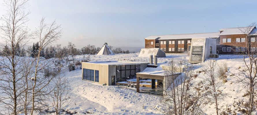 Om vinteren dyrkes det også vintersport i området.