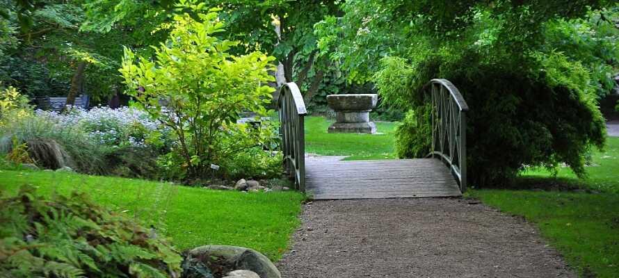 Gå en härlig tur i DBW's Botaniska Trädgård, njut av dess härliga omgivningar och se alla de ovanliga växterna.