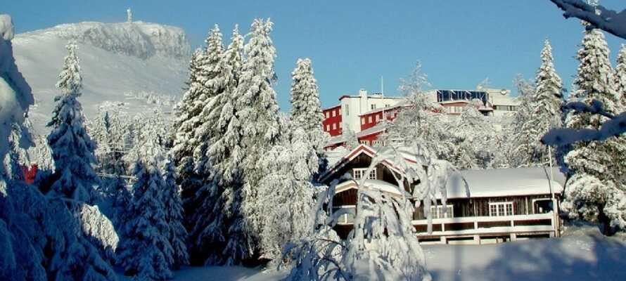 Thon Hotel Skeikampen ligger 40 km. nord for Lillehammer og tilbyr et opphold fylt med opplevelser i vinterhalvåret.