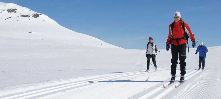Skeikampen byr på mange morsomme skiopplevelser om vinteren med både langrenn og alpinløyper.
