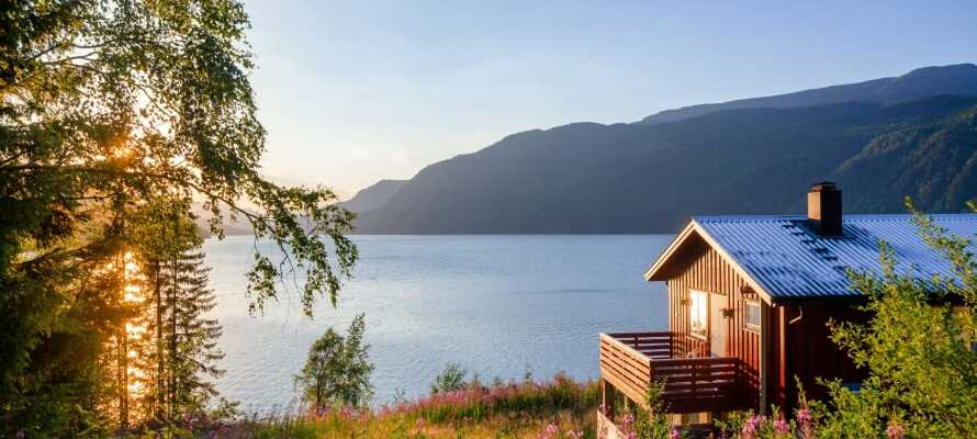 Dra på oppdagelsesferd i det naturskjønne området i Telemark, som innbyr til herlige gåturer
