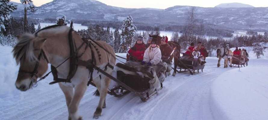 Dra på romantisk kjelke tur rundt i vinterlandskapet