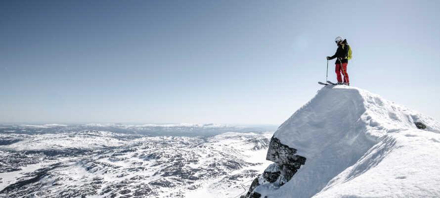 Hotellet ligger ved foden af Telemarks højeste fjeldtop, hvor I kan nyde en uforglemmelig udsigt over 1/6 af Norge!