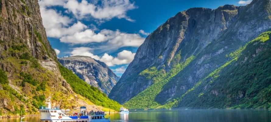 Det er mange gode utfluktsmål i nærheten av hotellet, blant annet en tur til Nærøyfjorden, som er oppført på UNESCOs verdensarvliste.