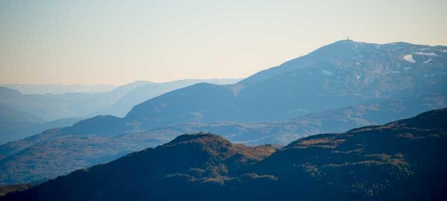 Udforsk den fantastiske natur i Myrkdalen, som starter lige ude foran hotellets dør!