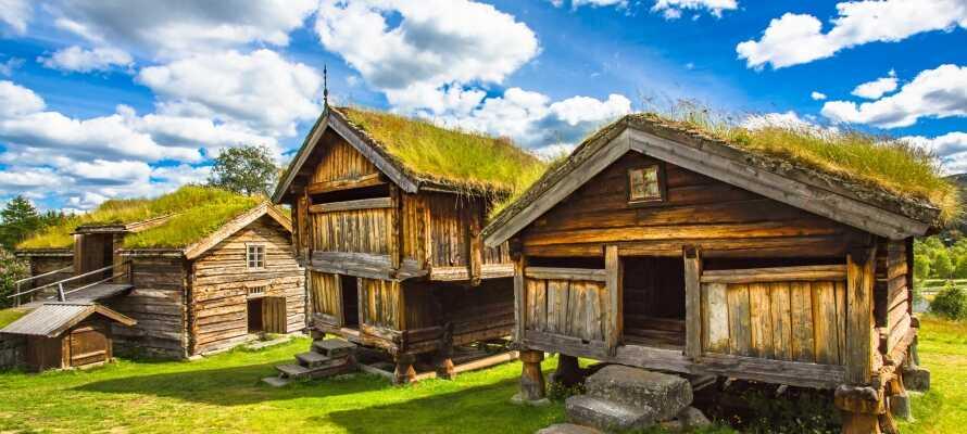 Der er skønt i Geilo, både om sommeren og vinteren.