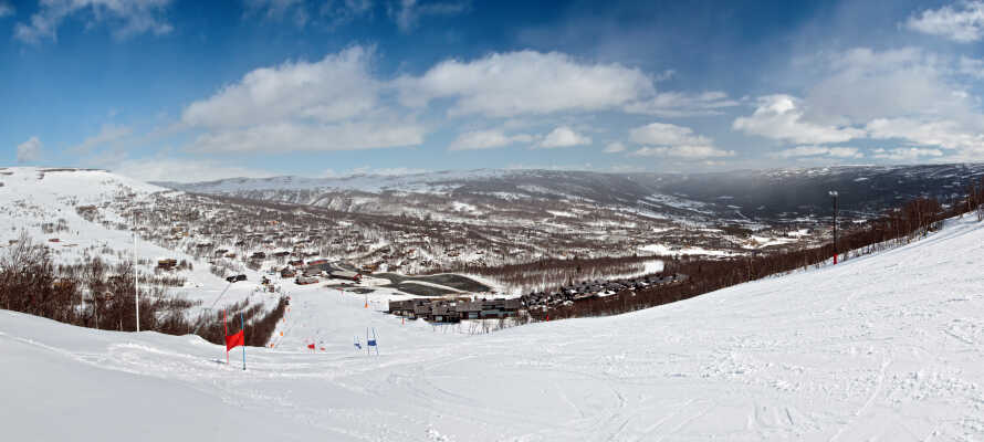 Det er veldig gode skiforhold om vinteren her, perfekt til en skiferie med hele familien.