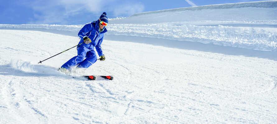 Nyd sneen og farten mens I suser ned ad bakkerne.