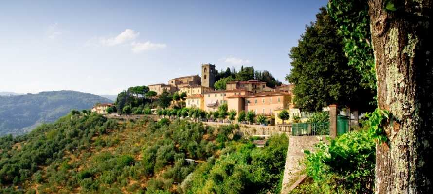 Massimo D'Azeglio ligger midt i den smukke toscanske kurby, Montecatini Terme.
