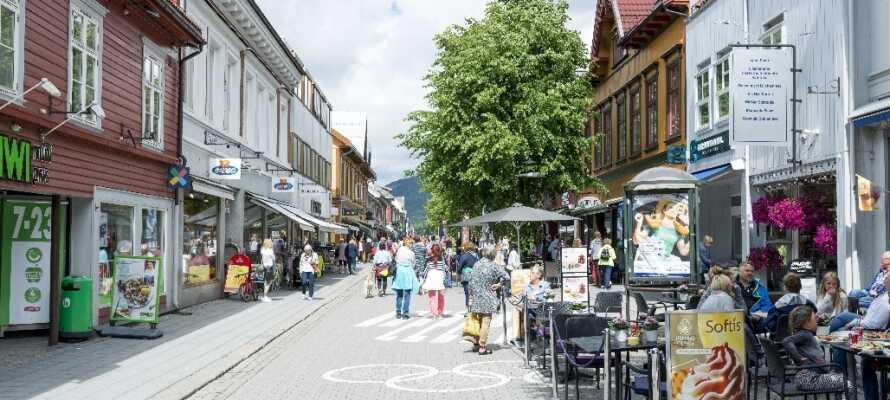 Lillehammer er en charmerende by, der også har titlen af olympisk værtsby under Vinter-OL i 1994.