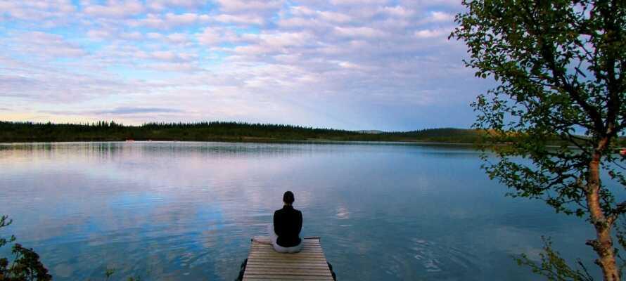 Når vandet har en god temperatur, så er der intet som en skøn svømmetur i Hornsjøen.