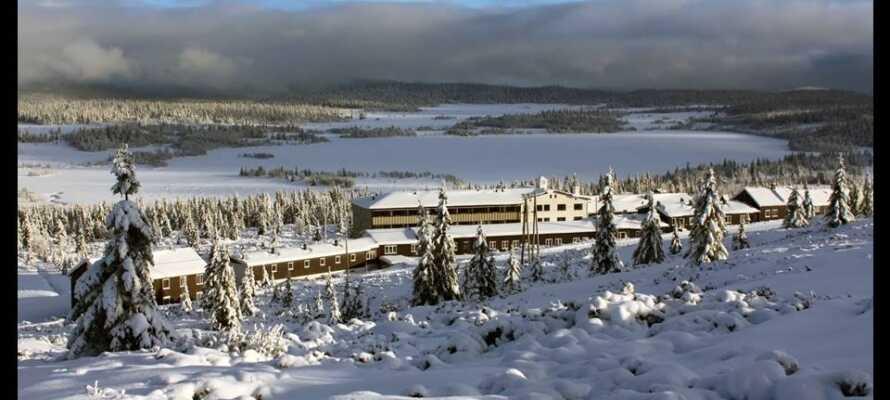Om vinteren byder terrænet omkring Hornsjø Høyfjellshotel på gode muligheder for at stå på ski.