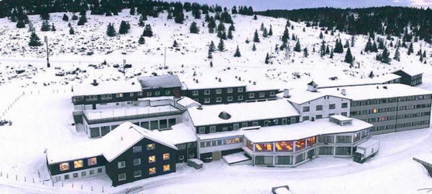 Hornsjø Høyfjellshotel er et skønt sted at holde vinterferie med familen.