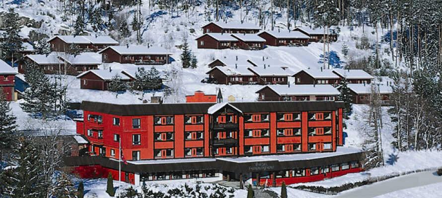 Tag på vinterferie i Vrådal og udforsk det smukke vinterlandskab i Telemark.