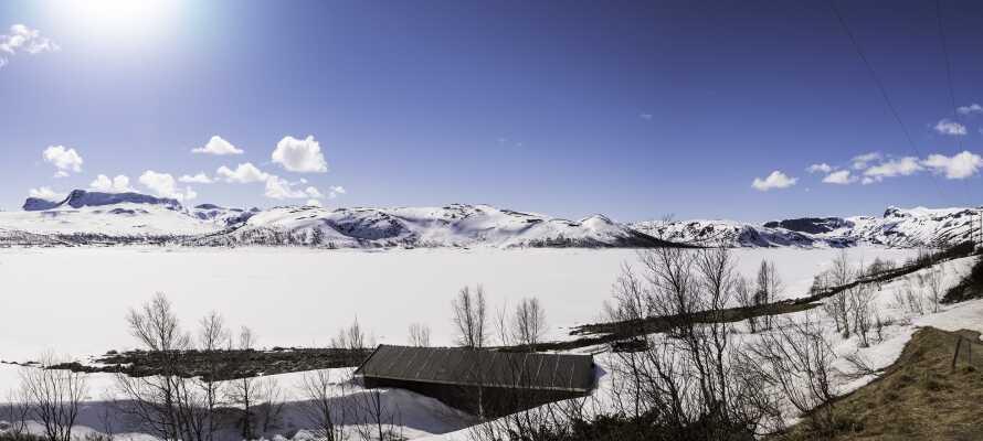 Når solen skinner og naturen har iklædt sig sin vinterjakke, så er Norge bare et skønt sted at holde ferie.