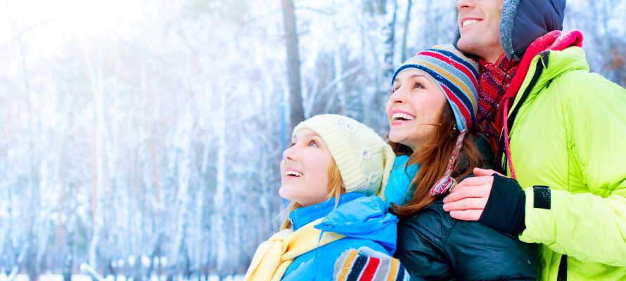 Giv familien en uforglemmelig oplevelse i Hunderfossen Vinterpark med bl.a. eventyrslot, iskatedral og magisk underholdning.