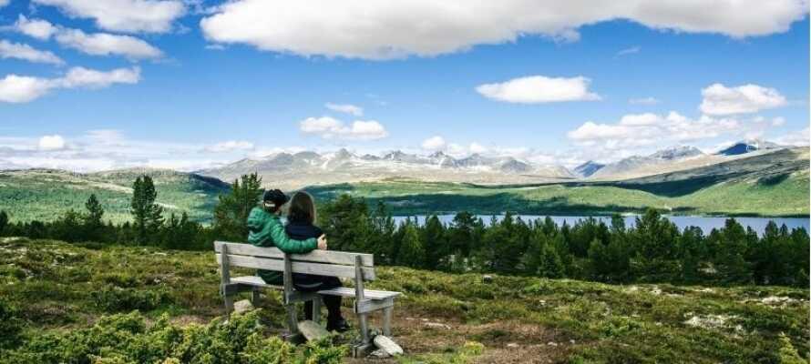 Der findes mange vandreruter i området, så I kan komme helt tæt på den flotte natur