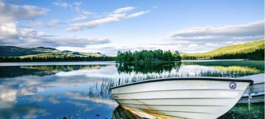 Om sommeren er det gratis at låne en robåd eller kano og tage sig en tur på søen.