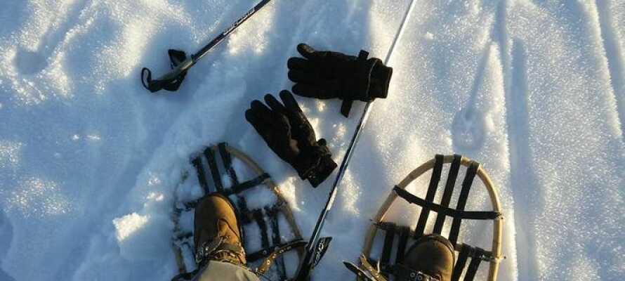 Lån snesko på hotellet og tag på vandretur om vinteren