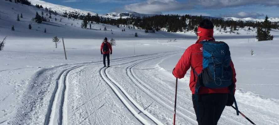Området byder på mange vinteroplevelser for hele familien. Det er bl.a. muligt at stå på ski på de nærliggende bakker.
