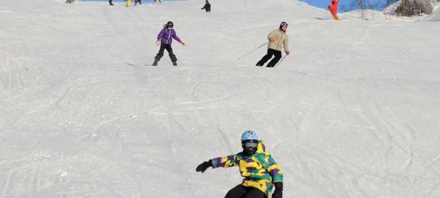 Der er mange muligheder til skientusiasterne når I holder ferle på Eikerapen Gjestegard.