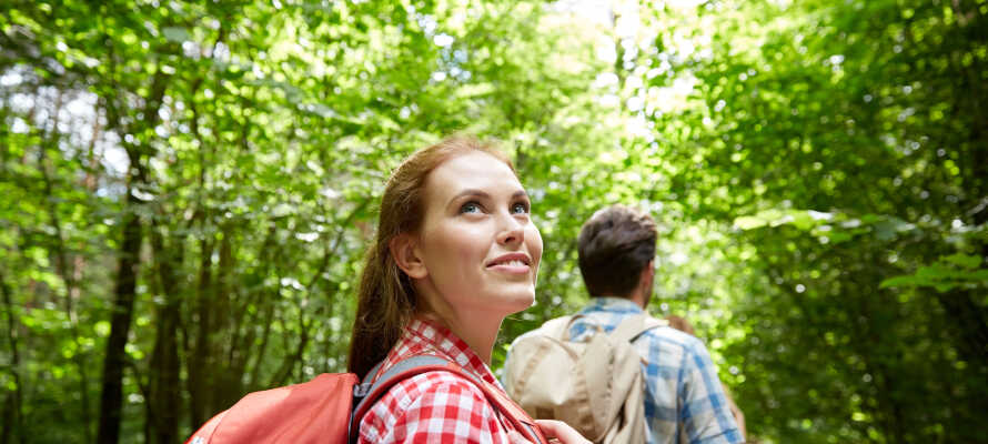 Vats Fjellstue er et sjarmerende lite hotell med massevis av vakker natur like i nærheten.