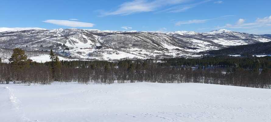 Dra ut på eventyr i de vakre snøkledde landskapene som omgir hotellet om vinteren.