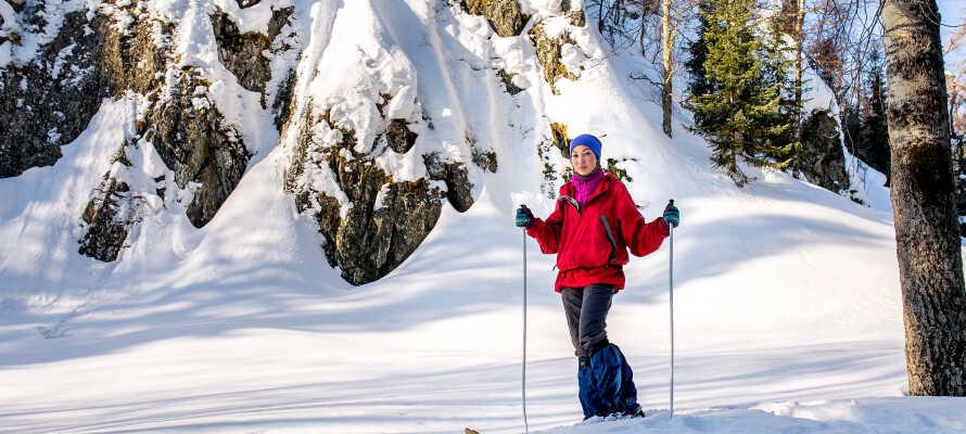 Tag på alletiders skitur ved Lemonsjøen, som byder på fremragende forhold under skieferien.