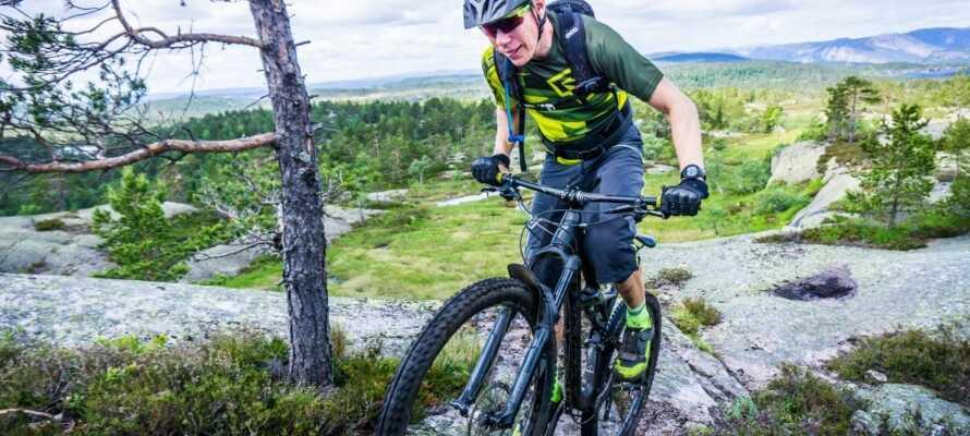 Om sommeren er der rig mulighed for at afprøve cykelstierne i bjergene.