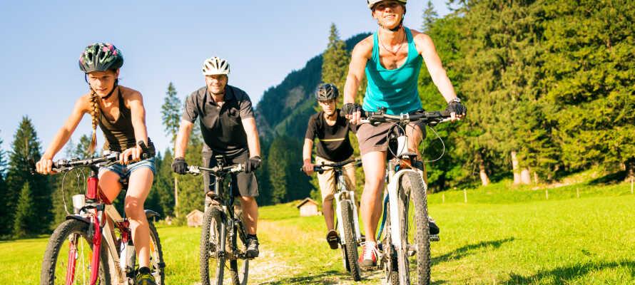 Salzkammergut-regionen som omgiver Bad Ischl er et paradis for vandreture og mountainbike.